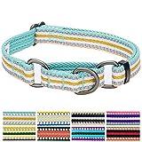 Blueberry Pet 1,5cm S 3M Reflektierendes Bunt Gestreiftes Pastellblau und Beige Sicherheitstraining Martingale Hundehalsband für Kleine Hunde
