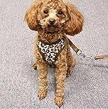 Haustier Leine Leopard Muster Brustgurt Hundeleine (Kaffee M) Komener
