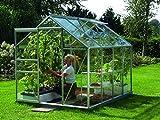 Gartenwelt Riegelsberger Gewächshaus Venus - Ausführung: 5000 ESG 3 mm Alu, Fläche: ca. 5 m², mit 1 Dachfenster, Sockel: 1,92 x 2,54 m