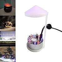 TASHELLS Ultraschall Vernebler,Nebelmaschine Mini,Halloween Cauldron Deko,12 LED Mister Fog Machine,Nebelbrunnen