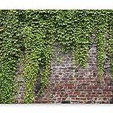 murando - Fototapete 400x280 cm - Vlies Tapete - Moderne Wanddeko - Design Tapete - Wandtapete - Wand Dekoration - Steine Mauer Efeu b-A-0173-a-c