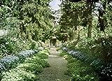 Leinwand-Bild 40 x 30 cm: 'Path in Monets Garden at Giverny, early 1920s (photo)', Bild auf Leinwand
