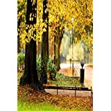 AOFOTO 3x5ft Park Autumn Scenic Background Fall Street Landscape Photography Backdrop Nature Yellow Tree Leaves Kid Boy Girl Artistic Portrait Photoshoot Studio Props Video Drape Wallpaper