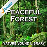 Peaceful Forest (Nature Sounds for Deep Sleep, Relaxation, Meditation, Spa, Sound Therapy, Studying, Healing Massage, Yoga and Chakra Balancing)