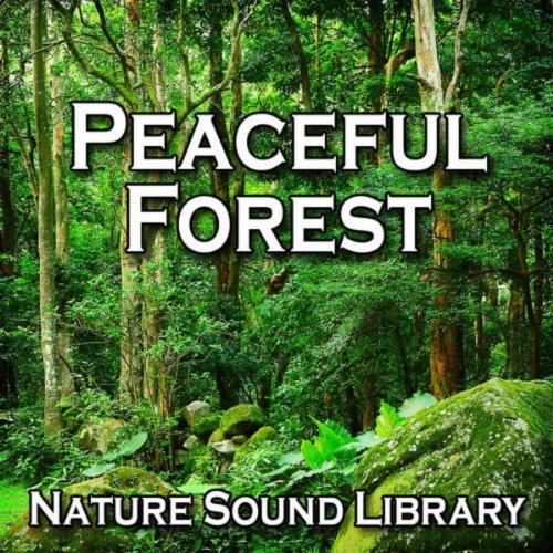 Peaceful Forest (Nature Sounds...