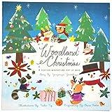 Woodland Christmas: A Festive Wintertime Pop-Up Book by Yevgeniya Yeretskaya (2013-11-05)