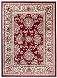 Grande Tapis d'Orient - Rouge - Motif Persan Traditionnel et Oriental - Tapis de...