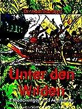 Unter den Wilden: Entdeckungen und Abenteuer (Illustrations)