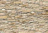 murando - Fototapete 350x256 cm - Vlies Tapete - Moderne Wanddeko - Design Tapete - Wandtapete - Wand Dekoration - Steinmauer Steine Stein Steinoptik 3D Mauer f-B-0013-a-a