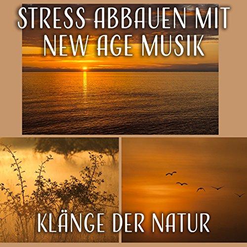 Stress Abbauen mit New Age Musik: Klänge der Natur (Geräusche der Vögel, Meereswellen) Beruhigende Instrumentalmusik (Flöte, Klavier Musik) für Geführte Meditation, Entspannung Klang Der Flöten