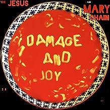 Damage And Joy [Vinyl LP]