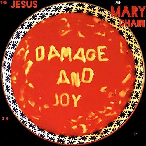damage-and-joy-vinilo