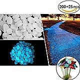 JUSLIN 200 Stück Weiß Pebbles Leuchtende Stein Kieselsteine Für Garten Aquarium mit 25 Stück Schmetterling Stakes