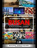 A Complete Guide to Busan: A Photographic Journey