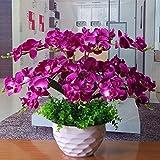 GBHNJ False Lila Butterfly Orchid Deko Vase Künstliche Fe