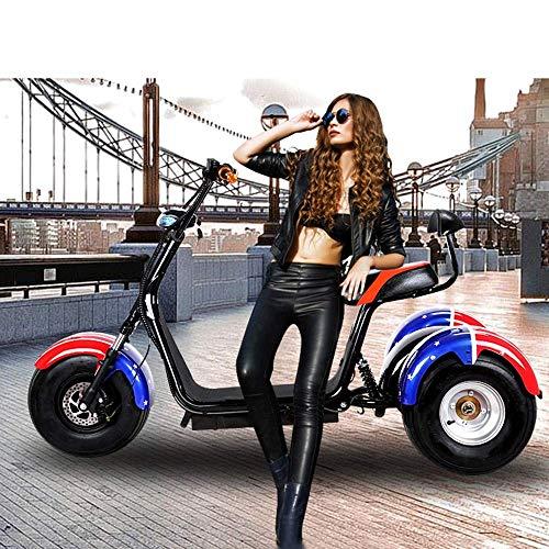 zcsdf Outdoor Reise Ausrüstung Rennrad Drei Runden Harley Elektroauto Elektro Skateboard Lithium Batterie Harley Elektro Walker 60V / 20Ah 1500W Abnehmbare Lithium Batterie,B (1500w Elektro-roller)