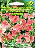 Wohlriechende Edelwicke Cuthbertson 'Lois' rosa Wicke rankend, einjährig 'Lathyrus odoratus'