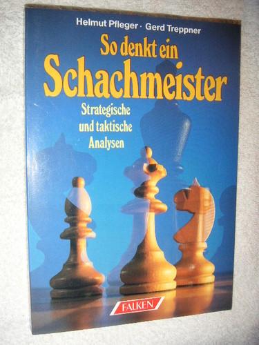 So denkt ein Schachmeister. Strategische und taktische Analysen