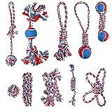 Navaris 10er Set Seil Hundespielzeug - Umfangreiches Hunde Seilspielzeug Spielzeug Spielset - Robustes Kauspielzeug mit Vielen Formen - Tauspielzeug