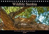 Wildlife Sambia (Tischkalender 2019 DIN A5 quer): Sambia mit seinen wunderschönen und tierreichen Nationalparks - ein Land für Natur- und Tierliebhaber. (Monatskalender, 14 Seiten ) (CALVENDO Tiere) - Photo4emotion.com