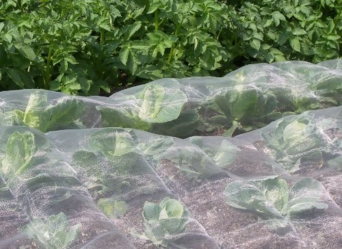 Veggiemesh Moustiquaire de jardin Filet de protection anti-insectes – Beaucoup de tailles disponibles Veggiemesh Insect Netting 3.6m x 6m