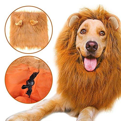 Miyare Hunde Perücke Löwe Mähne Perücke Löwenkostüm für -