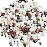 400g de gravier coloré et de marbre blanc pour décorer fond aquarium avec eau, plantes aquatiques, sable