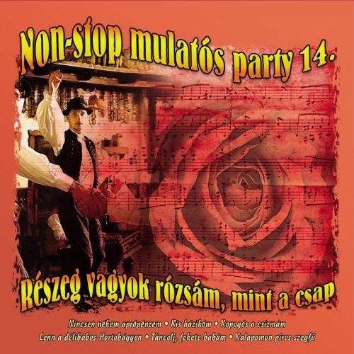 Non-Stop Mulatós Party, Vol. 14 (Részeg Vagyok Rózsám, Mint A Csap) - Non-stop-mint