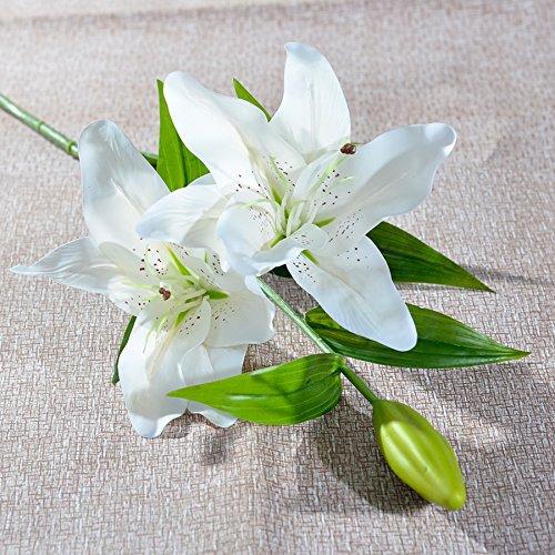 Xin Pang 1 Wie Blumen Emulation Blume Wasserhyazinthe Danzhi Wohnzimmer Couchtisch auf künstliche Blumen Tabelle Lyndhurst Emulation, Snow White Single Support -