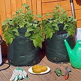 Lot de 2 sacs de culture pour pommes de terre