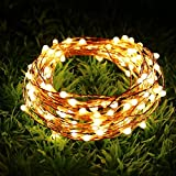 Best Outdoor String Lights - Quace USB Powered 10M 100 LED Copper String Review