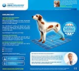 Aqua Coolkeeper Hunde Kühlmatte – Modell: Red Western (Gr. L 80x 60cm) - 6
