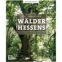 Die schönsten Wälder Hessens: Faszinierende Naturentdeckungen
