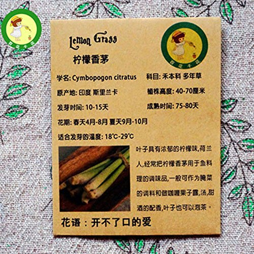 Empaquetado original de citronela, hierba de limón Semillas Hierbas un fuerte sabor a limón, especias gérmenes 10 / Bolsa
