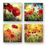 Mohnblumen Set A schwebend, 4-teiliges Blumen Bilder-Set jedes Teil 29x29cm, Seidenmatte Optik auf Forex Fine Art, moderne Optik, UV-stabil, wasserfest, Kunstdruck für Büro, Wohnzimmer, XXL Deko Bild