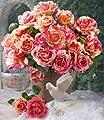 Delbard® Malerrosen® 'Claude Monet®', 1 Pflanze Edelrose von Delbard - Du und dein Garten