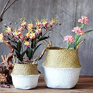 SAWEY Handmade Woven Hanging Basket,Home Storage Organization Hand-woven Collapsible Plant Pots Natural Seaweed Woven basket Home Garden Wedding Wall Decoration