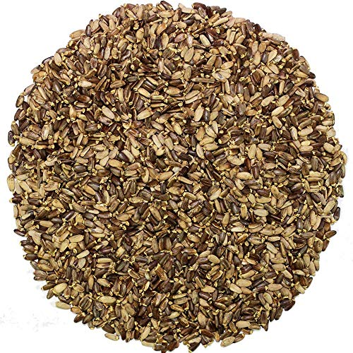 Sorich Organics Milk Thistle Seeds for Boosting Liver Health and Lowering Cholesterol - 100 Gm