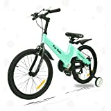 R for Rabbit Tiny Toes Rapid Bicycle for Kids - Smart Kids Cycle with Plug and Play for Kids 7 Years to 10 Years (20…
