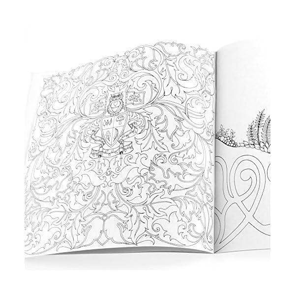 RROVE Libros de Pintura Inglés Misterio para Adultos Garden Treasure Hunt Coloring Painting Book 4