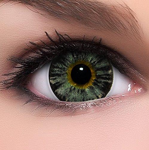 Linsenfinder Lenzera Circle Lenses graue 'Nudy Grey' ohne Stärke + Kombilösung + Behälter Big Eyes 15mm farbige Kontaktlinsen