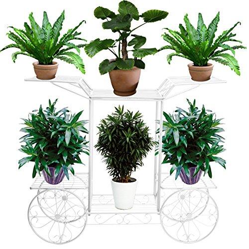 Blumentreppe 2 Ebenen, Aus Metall, Blumenständer für innen und außen, HBT: ca. 67x 79 x 25 cm (Weiß) -