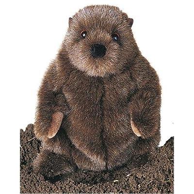 Douglas Cuddle Toys Chuckwood - Marmota de peluche (28 cm) de Douglas Cuddle Toys