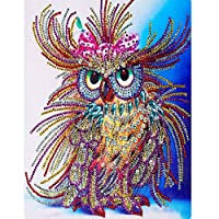 Byeel Diamond Painting Kits Full Drill, DIY 5d diamond painting kits Rhinestone Crystal Embroidery Pictures Cross Stitch Art Craft for Home Decor Owl 40x30cm (Multicolor,40x30cm)