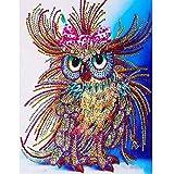 Diamond Embroidery TAOtTAO Spezielle geformte Diamant Malerei DIY 5D Teilbohrer Kreuzstich Kits Kristall R