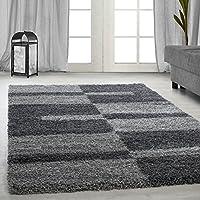 Carpetsale24 DESIGNER SHAGGY AREA RUGS BORDURE CARPET, Color:grey, Size:80x150 cm