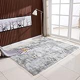 Ultra Soft Tie-Dye Style Gradient Color Carpet Floor Bedroom Mat Rectangle Shape Fluffy Rug for Living Room Bedroom Balcony H