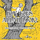 How Does Allah Look?: Volume 2 (Children's First Questions)