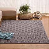 Teppiche CAMAL Rechteckige Plaid Modell Waschbare Koralle Samt Dekorative Teppich Wohnzimmer Schlafzimmer Und Bad