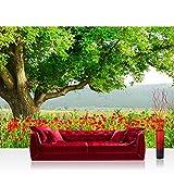 Carta da parati fotografica 350x 245cm Premium Plus carta da parati fotografica da parete murale Carta da parati–a Beautiful Tree–Naturale Campo di papaveri, albero foresta alberi rosso verde Idyll–No. 090